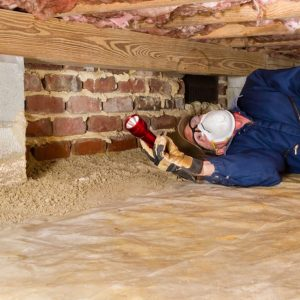 house inspections melbourne termite cost